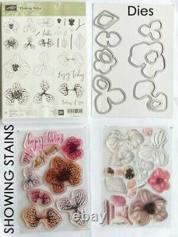Lot of 18 Stampin Up Stamp Sets, 3 with coordinating dies, with a Floral Theme