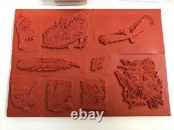 NEW Vintage 2002 Stampin Up BIRDS OF PREY Rubber Stamp Set Wildlife Unmounted