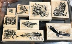 RARE Stampin Up BIRDS OF PREY Feathers Eagle Owl Wildlife 2002 HTF Vintage Set