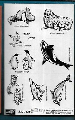 SEA LIFE SET Turtle SEAGULL Seal Realistic Marine Ocean Stampin Up! RUBBER STAMP