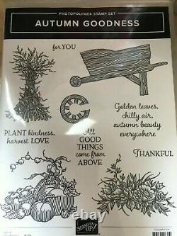 Stampin Up Autumn Good Photopolymer Stamp set and Dies