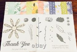 Stampin Up Bundle Daisy Lane & Daisy Delight Stamp Sets + 2 Daisy Punches NEW