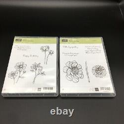 Stampin Up! Lot of 37 Stamp Sets Unmounted Cling Stamps DVD style Cases
