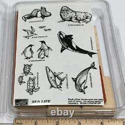 Stampin Up SEA LIFE SET Turtle SEAGULL Seal Realistic Marine Ocean RUBBER STAMP