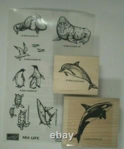 Stampin' Up! Sea Life Wood Mounted Rubber Stamp Set, Walrus, Shark, Penguin