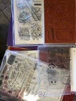 Stampin Up Ultimate Jars Love Haunts Sweet Flowers Craft Stamps Dies Set Lot
